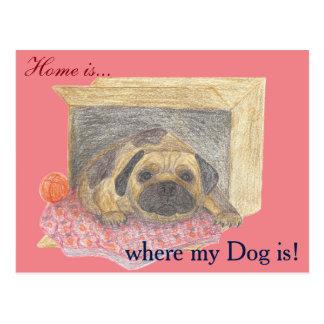 Cartão Postal A casa é, onde meu cão está!