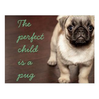 Cartão Postal A criança perfeita é um pug