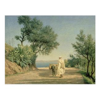 Cartão Postal A estrada ao mar, Argélia, 1883