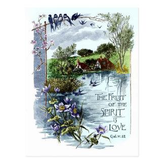 Cartão Postal A fruta do espírito é amor
