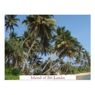 Cartão Postal A ilha do turismo das viagens vintage de Sri Lanka