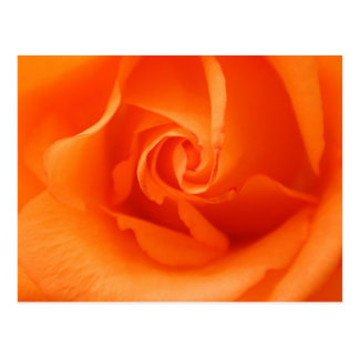Cartão Postal A laranja do pêssego aumentou