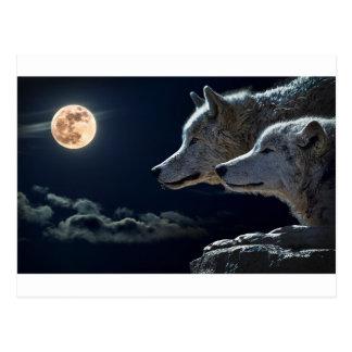 Cartão Postal A lua das luzes de céu nocturno Stars o espaço da