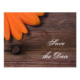 Cartão Postal A margarida alaranjada e o casamento de madeira do