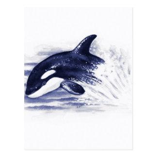 Cartão Postal A orca do bebê salta