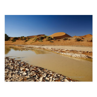 Cartão Postal a paisagem do deserto de Namib em Sossusvlei
