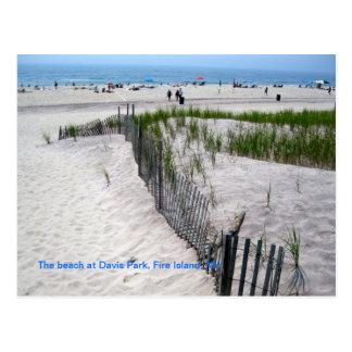 Cartão Postal A praia no parque de Davis
