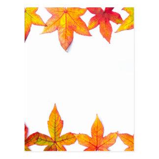 Cartão Postal A queda colorida deixa a estrutura no branco