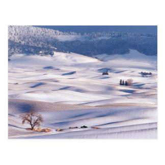Cartão Postal A vista do montículo de Steptoe de Rolling Hills