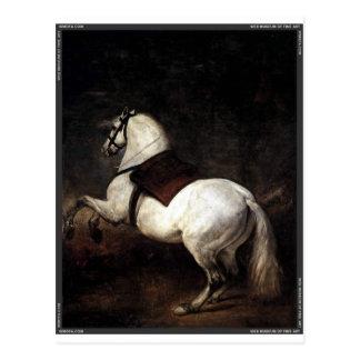 Cartão Postal A_White_Horse por Diego Velázquez.jpg