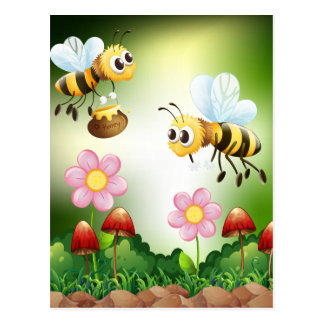 Cartão Postal Abelha e mel