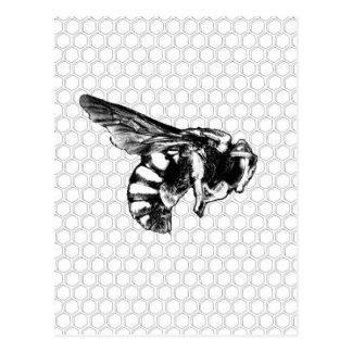 Cartão Postal Abelha preto e branco