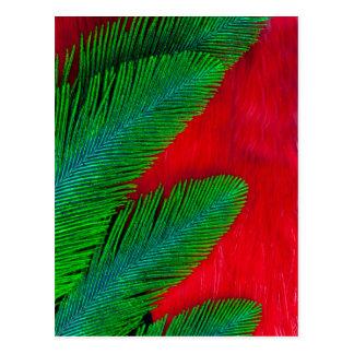Cartão Postal Abstrato vermelho e verde da pena