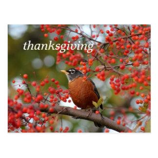 Cartão Postal acção de graças