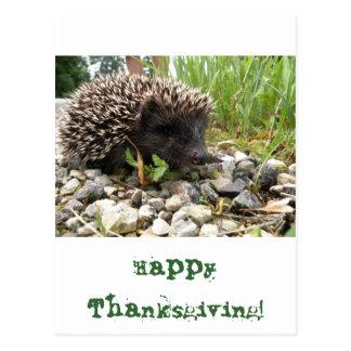 Cartão Postal Acção de graças feliz!