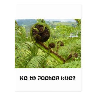 Cartão Postal Acima do dossel: Kiwiana