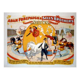 Cartão Postal Adam Forepaugh & irmãos das vendas