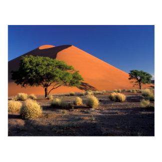 Cartão Postal África, Namíbia, parque de Namib-Naukluff,