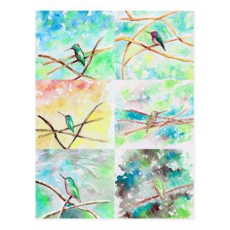 Cartão Postal Aguarela da coleção do colibri