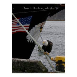 Cartão Postal Águia americana empoleirada em uma linha de