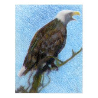Cartão Postal Águia americana que grita em uma árvore