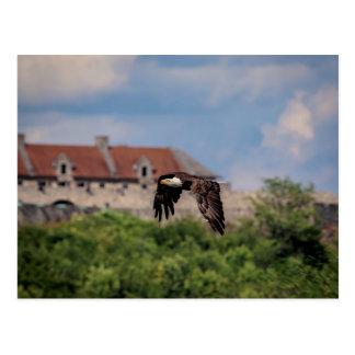 Cartão Postal Águia americana que passa o forte Ticonderoga