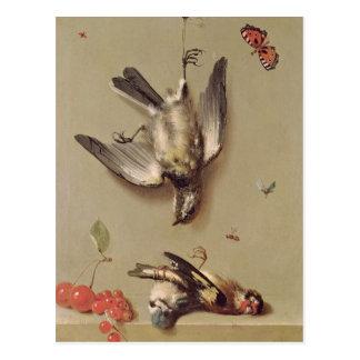 Cartão Postal Ainda vida dos pássaros e das cerejas inoperantes,