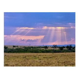 Cartão Postal Ajuste de Sun no Masai Mara.