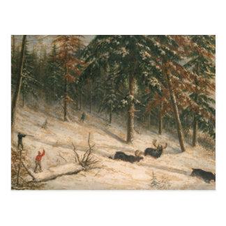 Cartão Postal Alces da caça