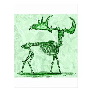Cartão Postal alces de esqueleto