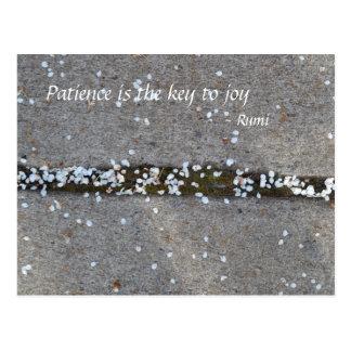 Cartão Postal Alegria de Rumi das pétalas do primavera