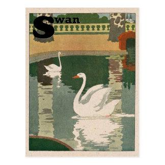 Cartão Postal Alfabeto da cisne
