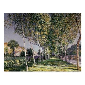 Cartão Postal Alfred Sisley | a caminhada