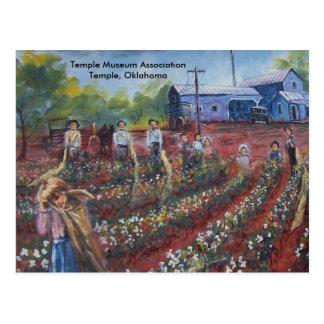 Cartão Postal Algodão Pickin em Oklahoma