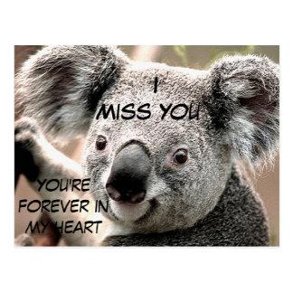 Cartão Postal Algumas ocasiões, Koala Bear_