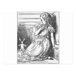Cartão Postal Alice no país das maravilhas e no coelho branco