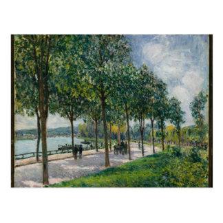 Cartão Postal Allée de árvores de castanha - Alfred Sisley