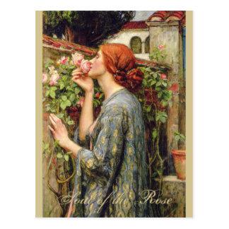 Cartão Postal Alma do Waterhouse do Pre-Raphaelite do rosa