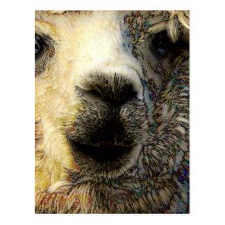 Cartão Postal Alpaca sauda-te mundialmente