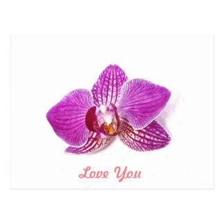 Cartão Postal Ame-o, arte floral da aguarela do phalaenopsis do