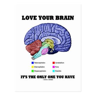 Cartão Postal Ame seu cérebro que é único você tem (o cérebro)