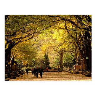 Cartão Postal America do Norte, EUA, New York, Nova Iorque. 12