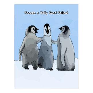 Cartão Postal Amigos do pinguim