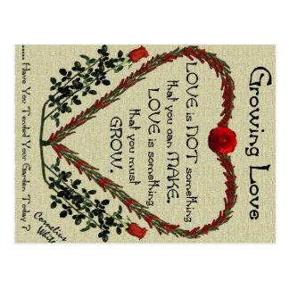 Cartão Postal Amor crescente