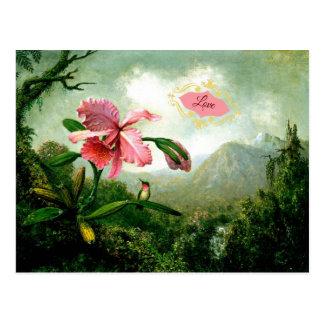 Cartão Postal Amor, orquídea e colibri perto de uma cachoeira