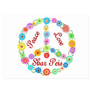 Cartão Postal Amor Shar Peis da paz