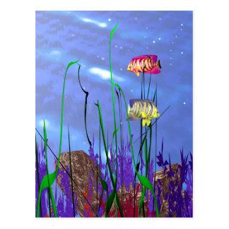 Cartão Postal Angelfish 3d colorido