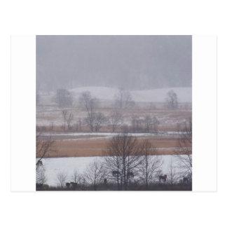 Cartão Postal Angra Great Smoky Mountains de Cades da cena do