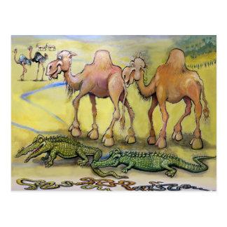 Cartão Postal Animais do deserto