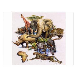 Cartão Postal Animais selvagens africanos no concerto